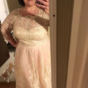 Chi-Chi London Tea Length Blush/Ivory Lace dress